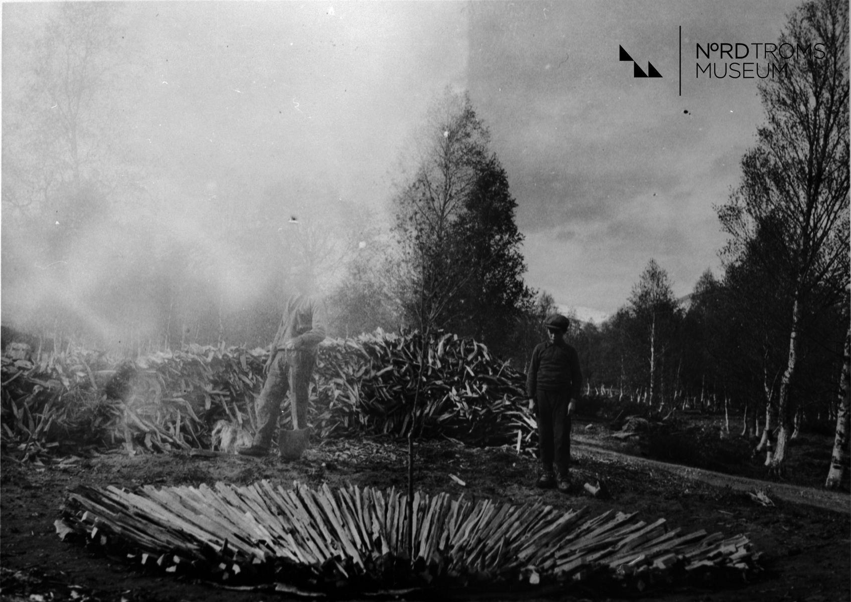 Tervahauta, pohja ladottu, Kjellari, Ragnhildin talo. (Tjæremile-botn).  Kjelleren, Nordreisa